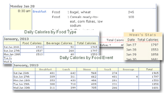 Daily Food Journal, Calorie Reports